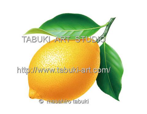 レモンのイラスト lemon