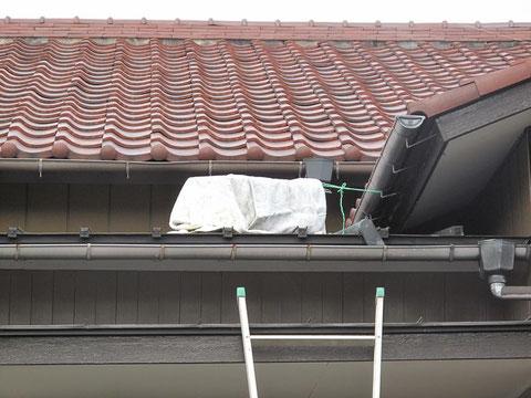 屋根の上に罠を仕掛けた