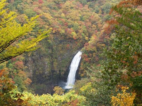 2011.10.15不動滝