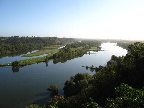 La Loire à Champtoceau