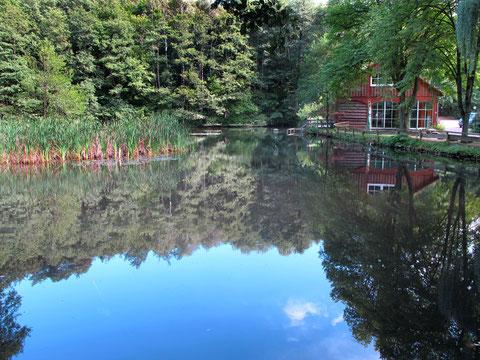 Die Wellnessoase mit Dampfsauna, finnischer Sauna, Solebecken und direktem Zugang zum Mühlenteich stehen uns kostenlos zur Verfügung.