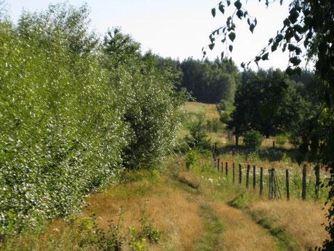 Vor der Haustür führen zahlreiche Wege in die idyllische Landschaft