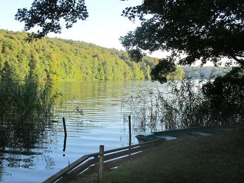 Eigene Bootsanlege- und Badestelle am Tornowsee vor der Haustür.