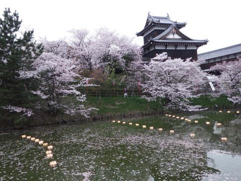 暗くなる前です。掘に桜が散って綺麗です。