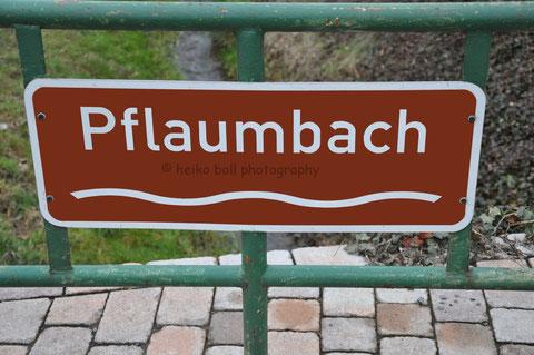 Der Pflaumbach in Radheim