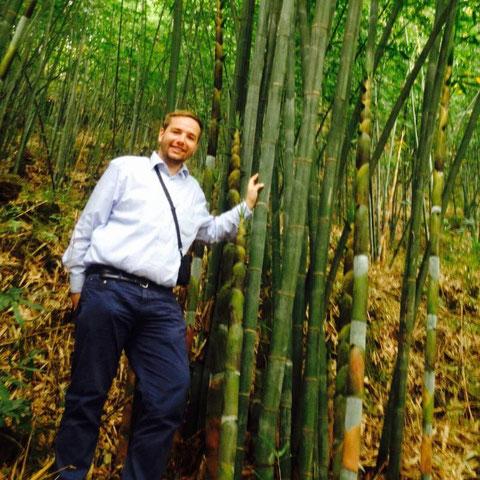Unser Mitgründer Karsten im Bambuswald unseres chinesischen Partners.