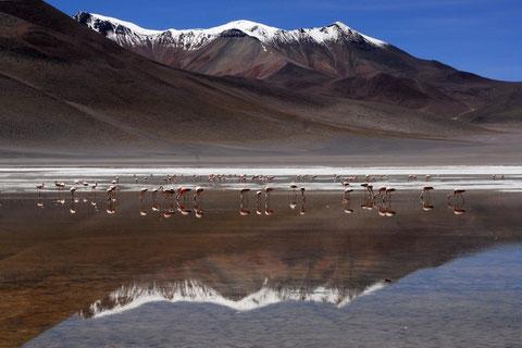 individuelles Reisen in Bolivien