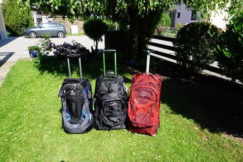 Rucksack Test Trolley Trolleyrucksack backpacks für Frauen