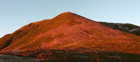 朝焼けの常念岳ですが、手前の緑色に見えるところ(結構広い)に蝶が飛んでいます。