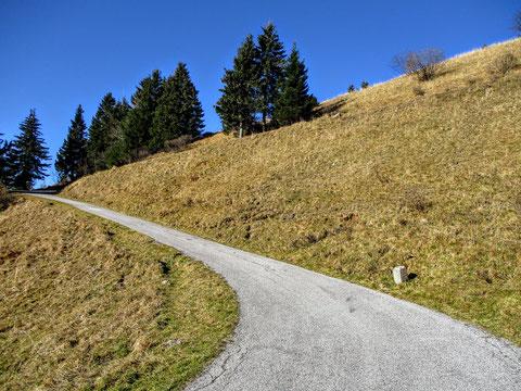 Monte Zoncolan, Giro d´Italia, Carnia, Ovaro