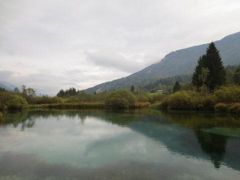 Zelenci, Kranjska Gora, Save Ursprung, Planica, Tamar, längster Fluß Kroatiens, Slowenien