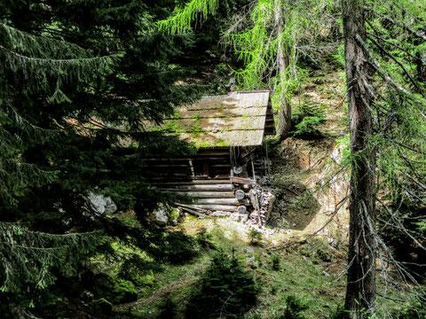 Zauberhafter Blick durch den Wald zur sonnenbeschienenen Aloisiahütte