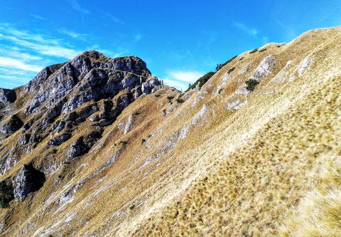 Ein schmaler Steig aus dem 1. Weltkrieg führt quer durch den Grasrücken hinauf zum Gipfel des Monte Schenone