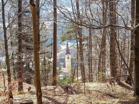 Schöner Blick durch den Bürgerwald auf die Kirche von Obertarvis