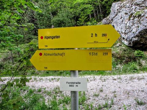 Aloisiasteig, Dobratsch, Villacher Alpe, wandern, Kranzwandsteig