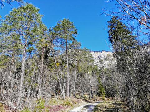Dobratsch, Villacher Alpe, Bergsturz, wandern
