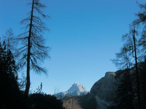 Blick hinüber zum Mangart 2.677m