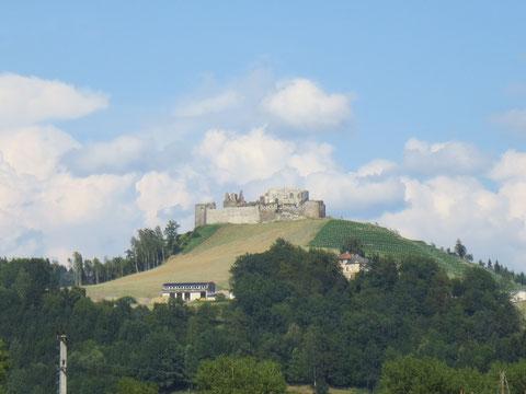 Blick auf die in den letzten Jahren herrlich revitalisiterte Burg Taggenbrunn