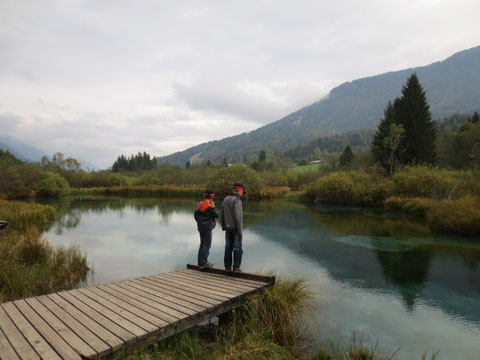 Zelenci, Kranjska Gora, Save Ursprung, Julische Alpen, größter Fluss Kroatiens, Sloweniens