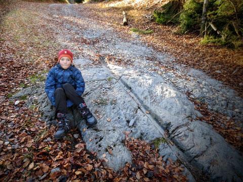 Sehr gut erhaltene Spuren der alten Römerstrasse zwischen Arnoldstein und Maglern