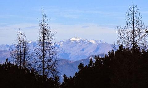 Die Hochalmspitze 2 Monate später, am 26.10.2013 von Süden - Julische Alpen, Slowenien (Slemenova špica, 1911m) aus gesehen