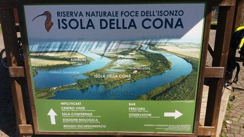 Isola della Cona, Isonzo, Soca