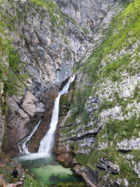 Der meistbesuchte Wasserfall Sloweniens - der Savica Wasserfall (Slap Savica) am hinteren Ende der Wochein (Bohinj)