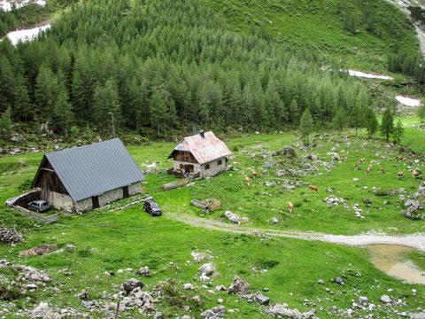 Wolayersee, Karnische Alpen, Alm