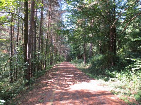 Radweg zwischen Staatsgrenze und Tarvis