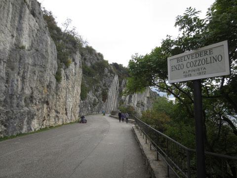 Triest, Strada Napoleonica, Vicentina, Napoleonstrasse, Prosecco