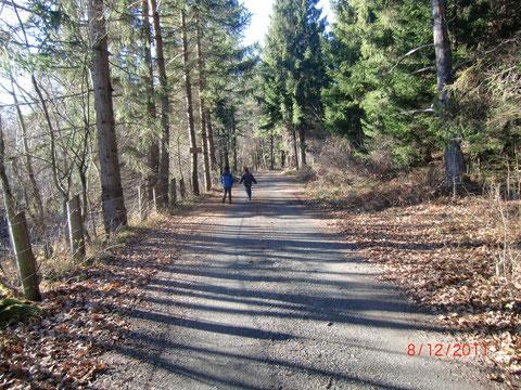 Dobratsch, Schütt, Bergsturzgebiet, Weinitzen
