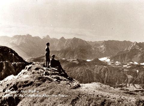 Dobratsch, Villacher Alpe, Blick zu den Julischen Alpen