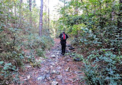 Alpe Adria Trail, Triest, Rosandratal