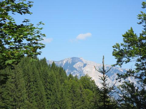 Wieder auf österreichischer Seite - Blick zum heimatlichen Dobratsch