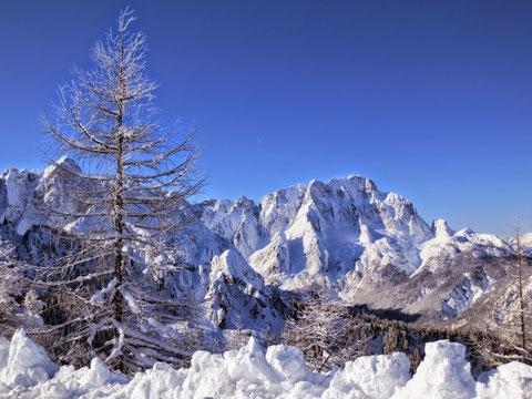 Der Montasch von Norden im Feber 2014