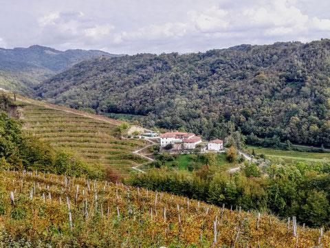 Goriska Brda, Wandern, Wanderwege