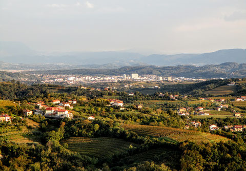 Goriska Brda, wandern, Wein, Collio