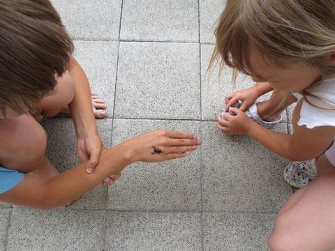 Die Kinder hatten eine Freude mit dem mitgebrachten Skorpion