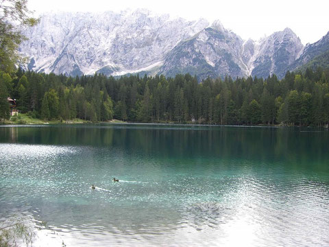 Weissenfelser Seen - Laghi di Fusine - Unterer See (Lago inferiore)