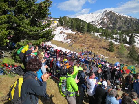 Monte Zoncolan, Giro d´Italia 2014