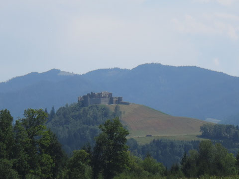Blick zur seit einigen Jahren wieder freigelegten Burg Taggenbrunn bei St.Veit an der Glan