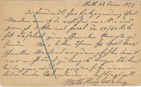 """Bestellung an P. Kugy über """"1 kleines Fassl ca 50 / 60 Kilo Tafeloel zum offerierten Preis"""" aus Hall in Tirol vom 22. Juni 1877"""