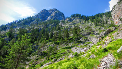 Villacher Alpe, Dobratsch, Nötscher Schütt