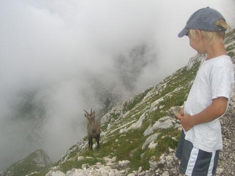 Cima di Terrarossa 2.240m - auf alten Kriegssteigen leicht erreichbarer Aussichtsberg in der Montaschgruppe