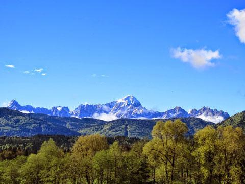 Herrlicher Blick zu den Anfang Mai noch schneebedeckten Julischen Alpen (Mangart)