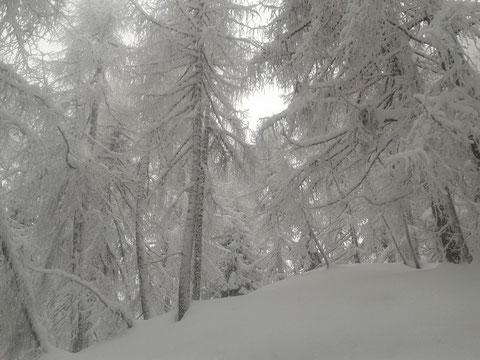 Luschariberg, Monte Lussari, Pilgerweg, Büßerweg
