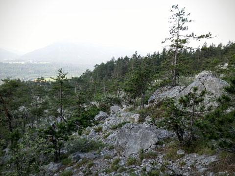 Durch das gewaltige und landschaftlich beeindruckende Bergsturzgebiet des Dobratsch geht es rasch bergauf
