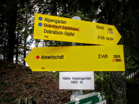 Kranzwandsteig, Dobratsch, Alpengarten, wandern