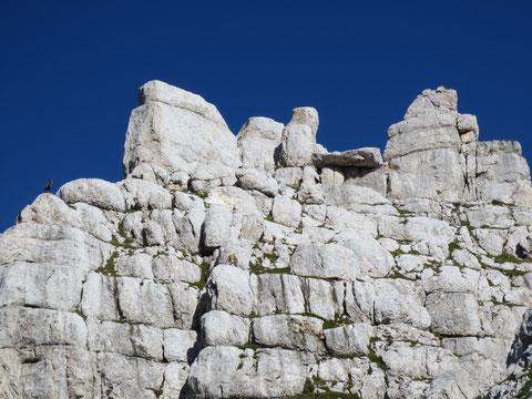 Bizzarre Felsgestalten, das Revier der Steinböcke