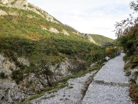 Ein vorbildlich angelegter Wanderweg mit weißem Kiesel zieht durch das Rosandratal - fast wie in einem Stadtpark...